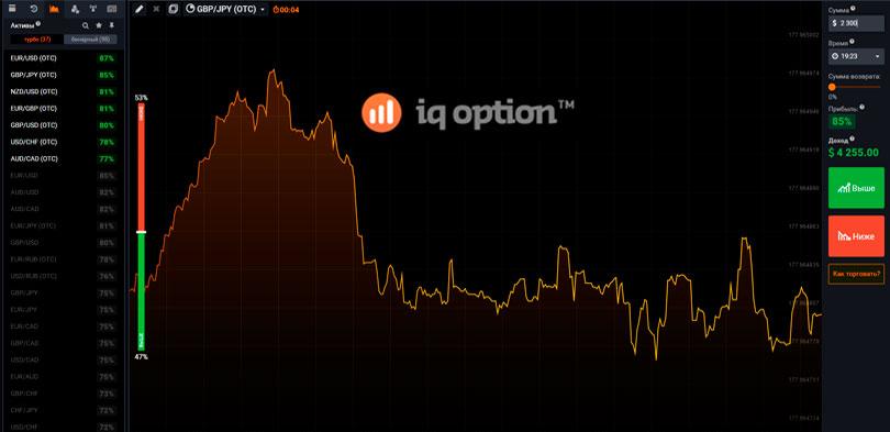 Айкью опцион бинарные опционы бинарный опцион на чем торговать